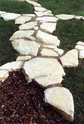 Steinechse